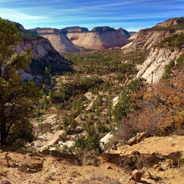 Zion National Park East Rim Trail