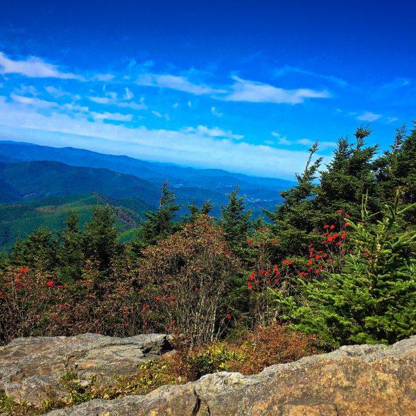 Mount Mitchell State Park Deep Gap Trail