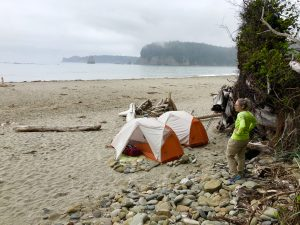 Backpacking Third Beach to Toleak Point in Olympic National Park