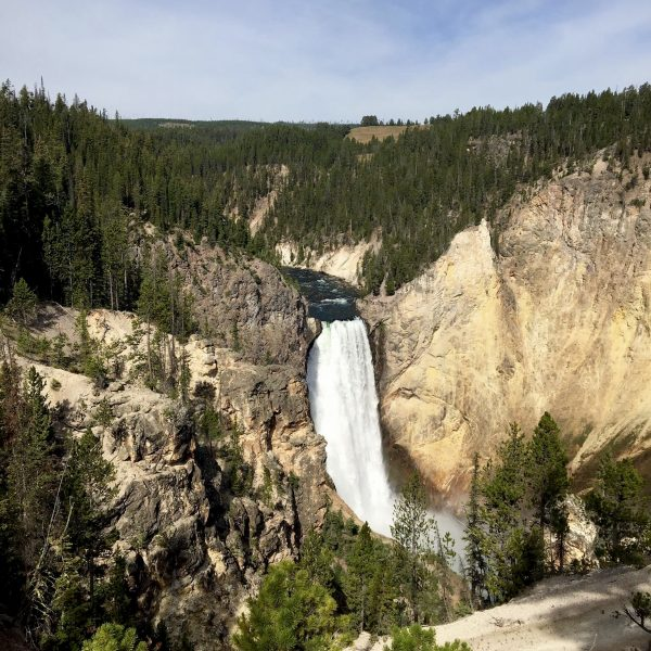 Yellowstone National Park - Grand Canyon of Yellowstone South Rim